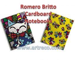 Cardboard Notebooks